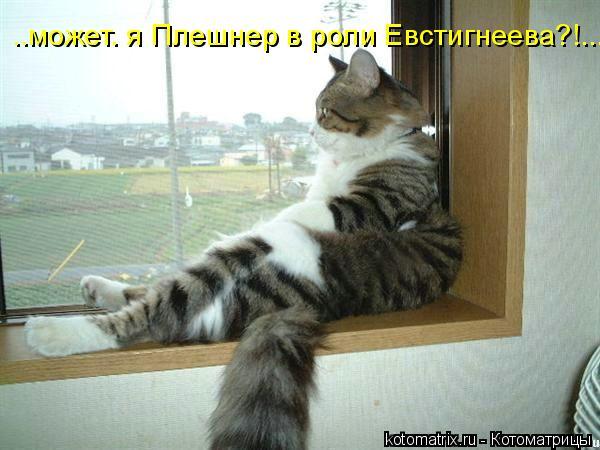 Котоматрица: ..может. я Плешнер в роли Евстигнеева?!...