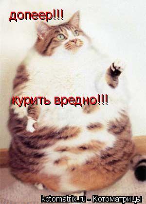 Котоматрица: курить вредно!!! допеер!!!