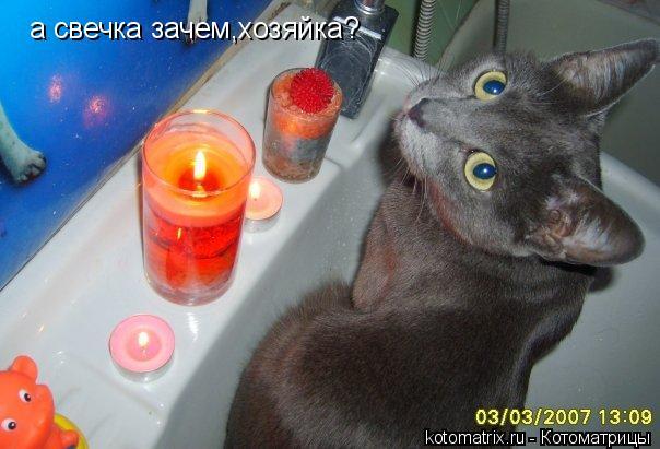 Котоматрица: а свечка зачем,хозяйка?