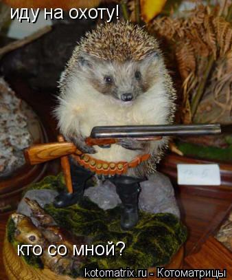 Котоматрица: иду на охоту! кто со мной?