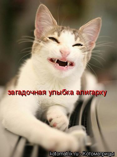 Котоматрица: загадочная улыбка алигарху