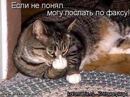 Котоматрица: Если не понял... могу послать по факсу!!!