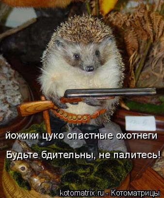 Котоматрица: йожики цуко опастные охотнеги Будьте бдительны, не палитесь!