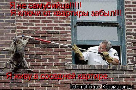 Котоматрица: Я не самубийца!!!!! Я ключи от квартиры забыл!!! Я живу в соседней квртире...