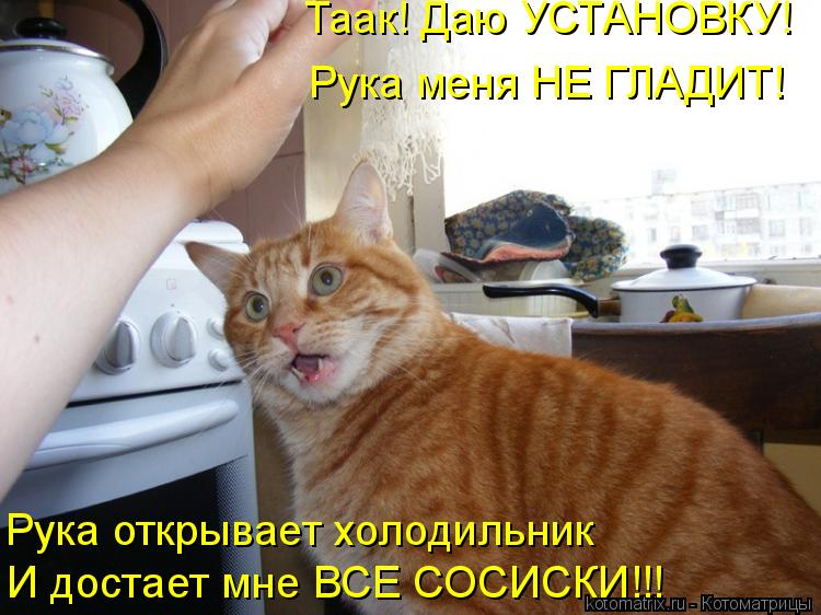 Котоматрица: Таак! Даю УСТАНОВКУ! Рука меня НЕ ГЛАДИТ! Рука открывает холодильник И достает мне ВСЕ СОСИСКИ!!!