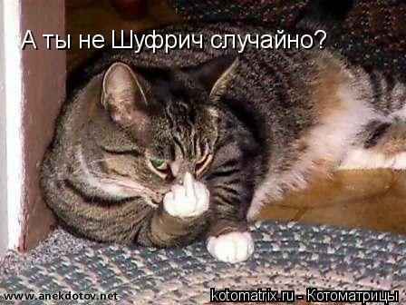 Котоматрица: А ты не Шуфрич случайно?