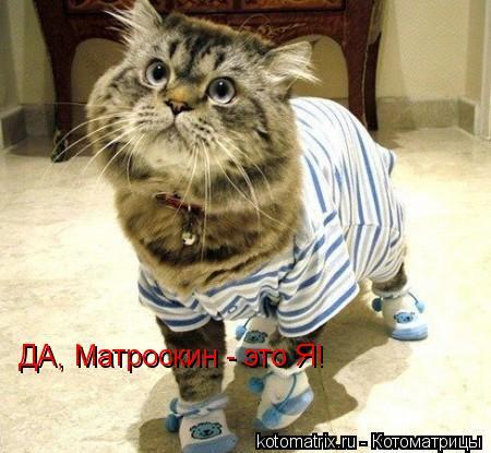 Котоматрица: ДА, Матроскин - это Я!