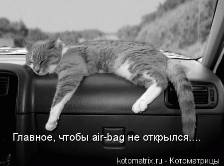 Котоматрица: Главное, чтобы air-bag не открылся....