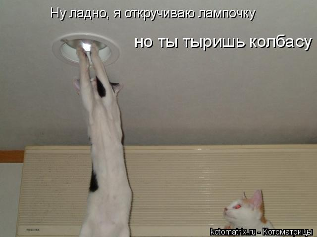 Котоматрица: Ну ладно, я откручиваю лампочку но ты тыришь колбасу