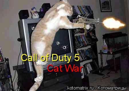 Котоматрица: Call of Duty 5 Cat War