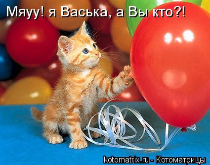 Котоматрица: Мяуу! я Васька, а Вы кто?!