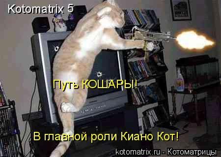 Котоматрица: Kotomatrix 5 Путь КОШАРЫ! В главной роли Киано Кот!
