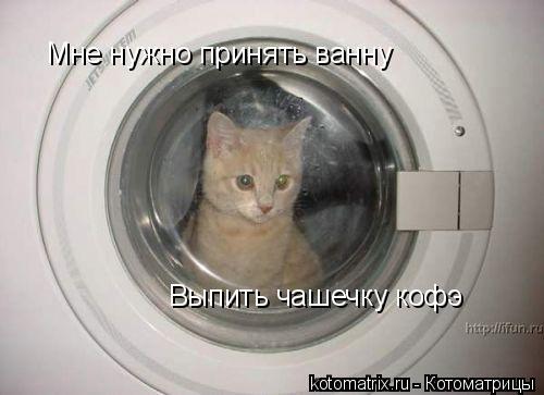 Котоматрица: Мне нужно принять ванну Выпить чашечку кофэ
