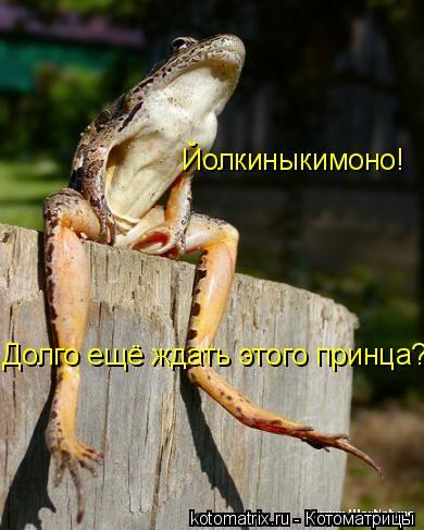 Котоматрица: Йолкиныкимоно! Долго ещё ждать этого принца?!