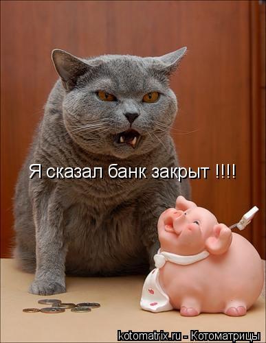 Котоматрица: Я сказал банк закрыт !!!!