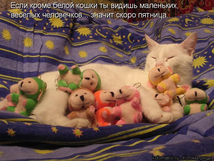 Котоматрица: Если кроме белой кошки ты видишь маленьких, веселых человечков... значит скоро пятница.