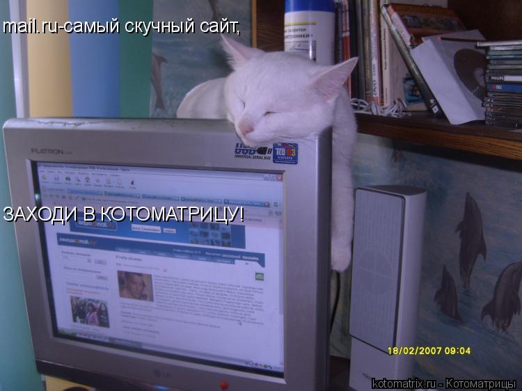 Котоматрица: mail.ru-cамый скучный сайт, ЗАХОДИ В КОТОМАТРИЦУ!