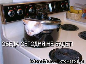 Котоматрица: ОБЕДА СЕГОДНЯ НЕ БУДЕТ!