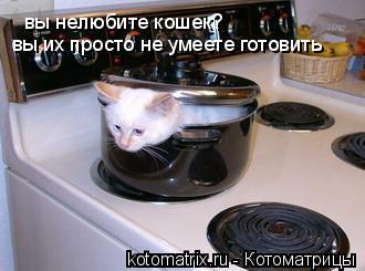 Котоматрица: вы нелюбите кошек? вы их просто не умеете готовить