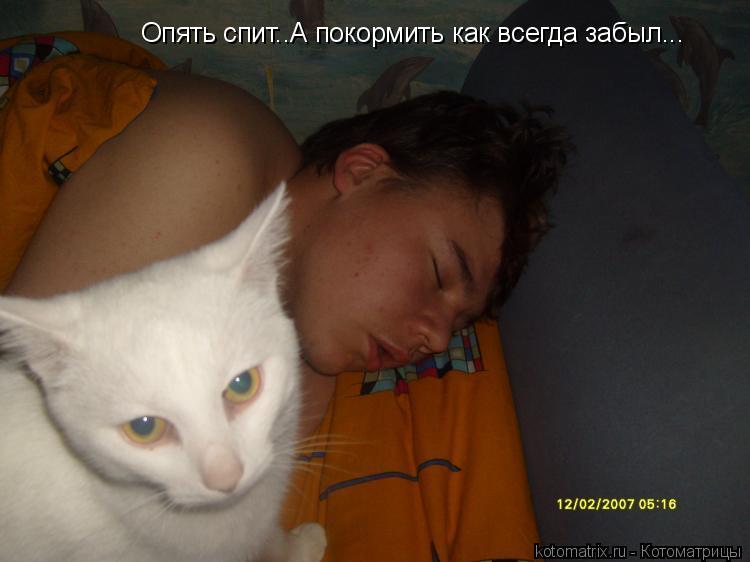 Котоматрица: Опять спит..А покормить как всегда забыл...