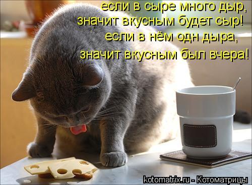 Котоматрица: если в сыре много дыр, значит вкусным будет сыр! если в нём одн дыра, значит вкусным был вчера!