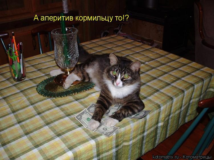 Котоматрица: А аперитив кормильцу то!?