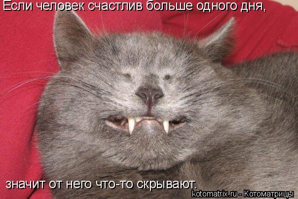 Котоматрица: Если человек счастлив больше одного дня,  значит от него что-то скрывают.