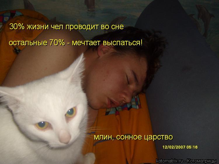 Котоматрица: остальные 70% - мечтает выспаться! 30% жизни чел проводит во сне  млин, сонное царство
