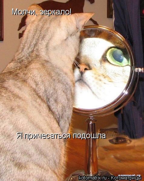 Котоматрица: Молчи, зеркало! Я причесаться подошла