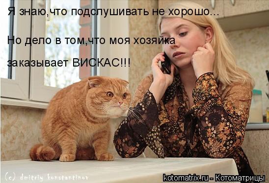 Котоматрица: Я знаю,что подслушивать не хорошо... Но дело в том,что моя хозяйка заказывает ВИСКАС!!!