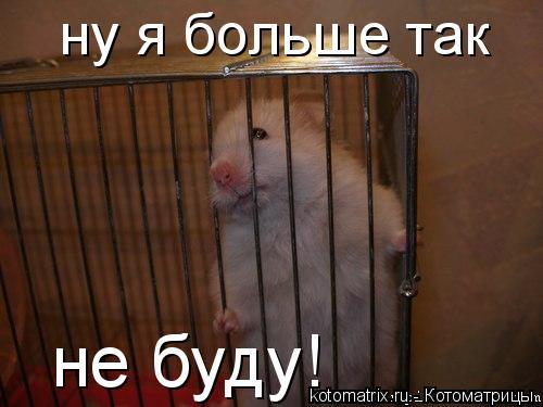 http://kotomatrix.ru/images/lolz/2008/06/10/KE.jpg