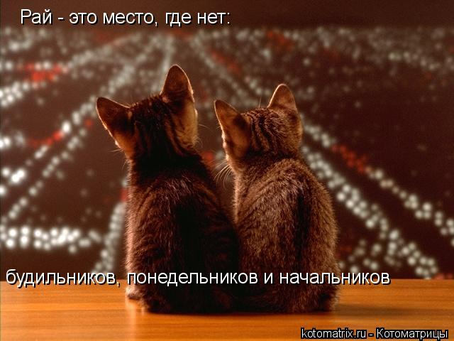 http://kotomatrix.ru/images/lolz/2008/06/10/OC.jpg