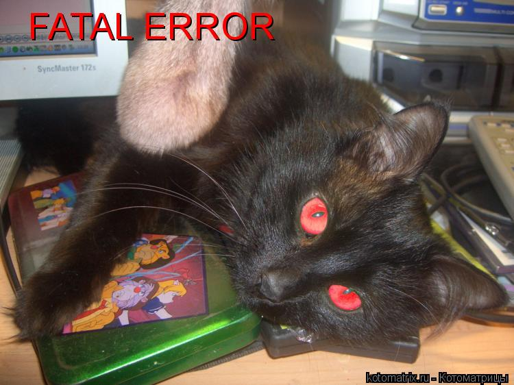 Котоматрица: FATAL ERROR