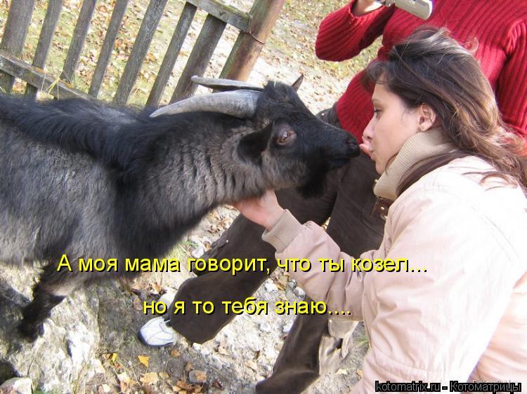 Котоматрица: А моя мама говорит, что ты козел... но я то тебя знаю....
