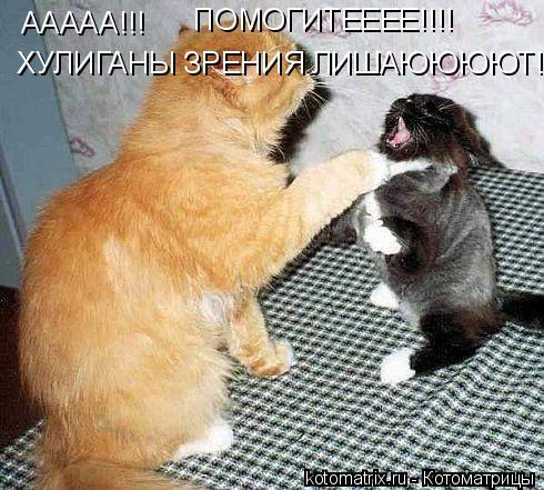 Котоматрица: ААААА!!! ПОМОГИТЕЕЕЕ!!!! ХУЛИГАНЫ ЗРЕНИЯ ЛИШАЮЮЮЮТ!!!!