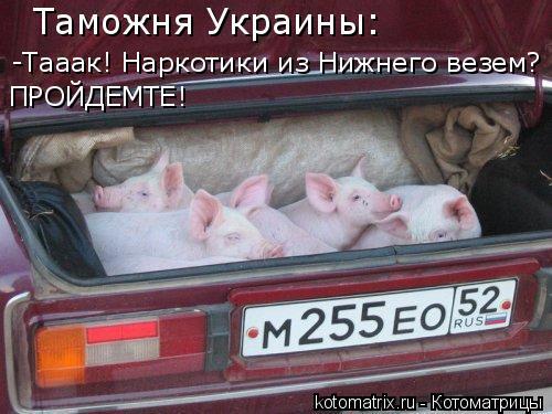 Котоматрица: Таможня Украины: -Тааак! Наркотики из Нижнего везем? ПРОЙДЕМТЕ!