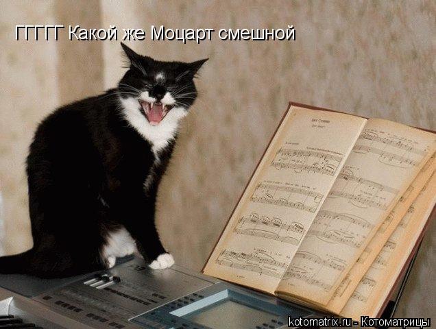 Котоматрица: ГГГГГ Какой же Моцарт смешной