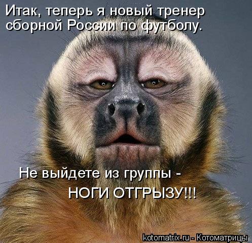 Котоматрица: Итак, теперь я новый тренер  сборной России по футболу. Не выйдете из группы -  НОГИ ОТГРЫЗУ!!!