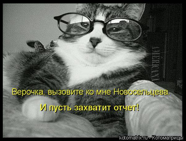 Котоматрица: Верочка, вызовите ко мне Новосельцева. И пусть захватит отчет!