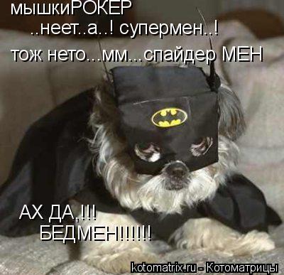 Котоматрица: мышкиРОКЕР ..неет..а..! супермен..! тож нето...мм...спайдер МЕН АХ ДА,!!! БЕДМЕН!!!!!!