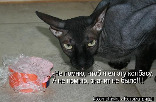 Котоматрица: -Не помню, чтоб я ел эту колбасу. А не помню, значит не было!!!!
