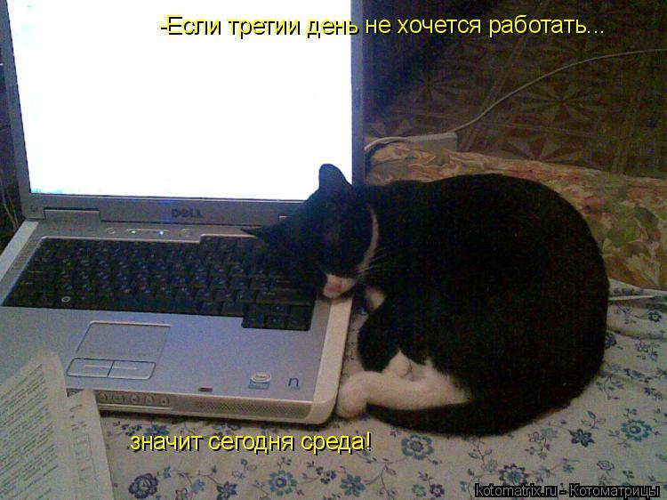 Котоматрица: -Если третии день не хочется работать... значит сегодня среда!