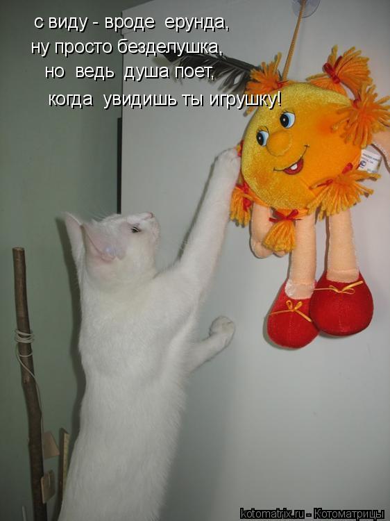 Котоматрица: с виду - вроде  ерунда, ну просто безделушка, но  ведь  душа поет, когда  увидишь ты игрушку!