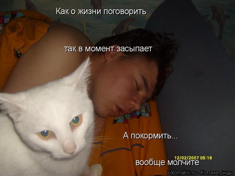 Котоматрица: Как о жизни поговорить так в момент засыпает А покормить... вообще молчите