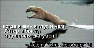 Котоматрица: когда я ем - я глух и нем Хитер и быстр и дьявольськи умен!!