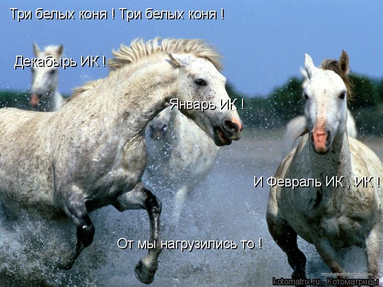 Котоматрица: Три белых коня ! Три белых коня ! Декабырь ИК ! Январь ИК ! И Февраль ИК , ИК ! От мы нагрузились то !