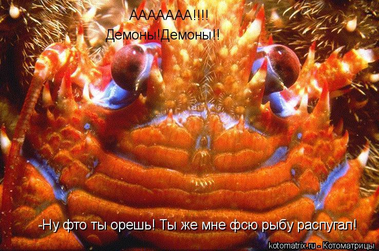 Котоматрица: ААААААА!!!! Демоны!Демоны!! -Ну фто ты орешь! Ты же мне фсю рыбу распугал!