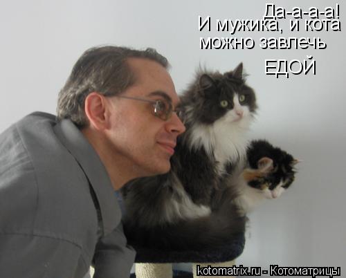Котоматрица: Да-а-а-а! И мужика, и кота можно завлечь ЕДОЙ