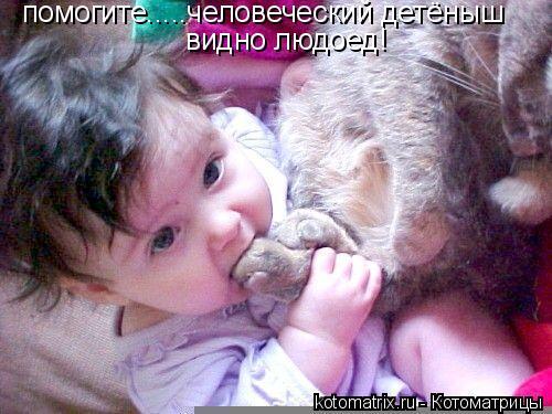 Котоматрица: помогите.....человеческий детёныш видно людоед!