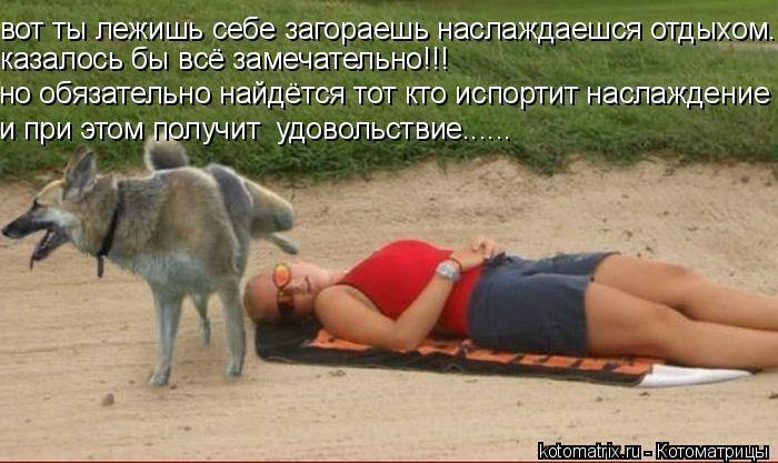 Котоматрица: вот ты лежишь себе загораешь наслаждаешся отдыхом.. казалось бы всё замечательно!!! но обязательно найдётся тот кто испортит наслаждение и